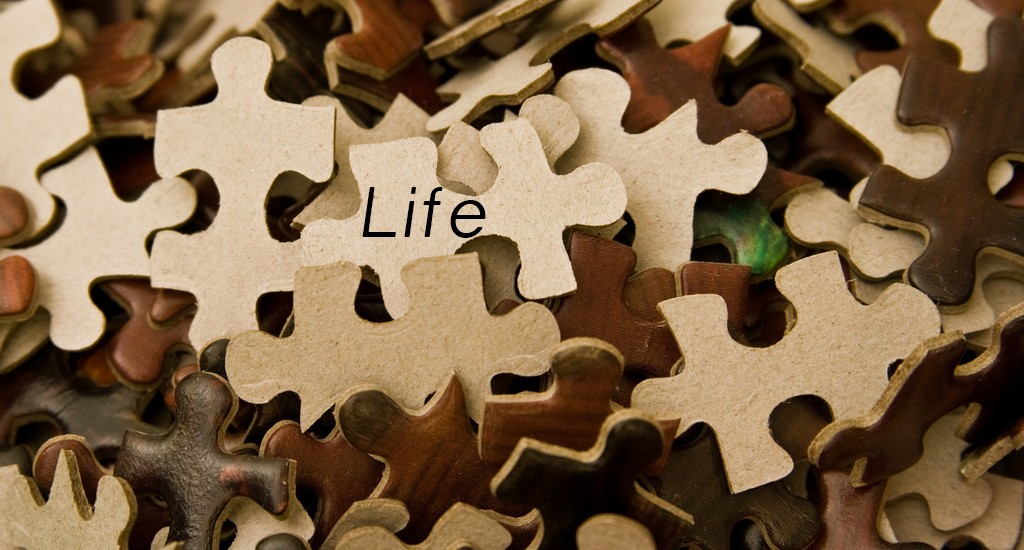 When Life Becomes a Puzzle